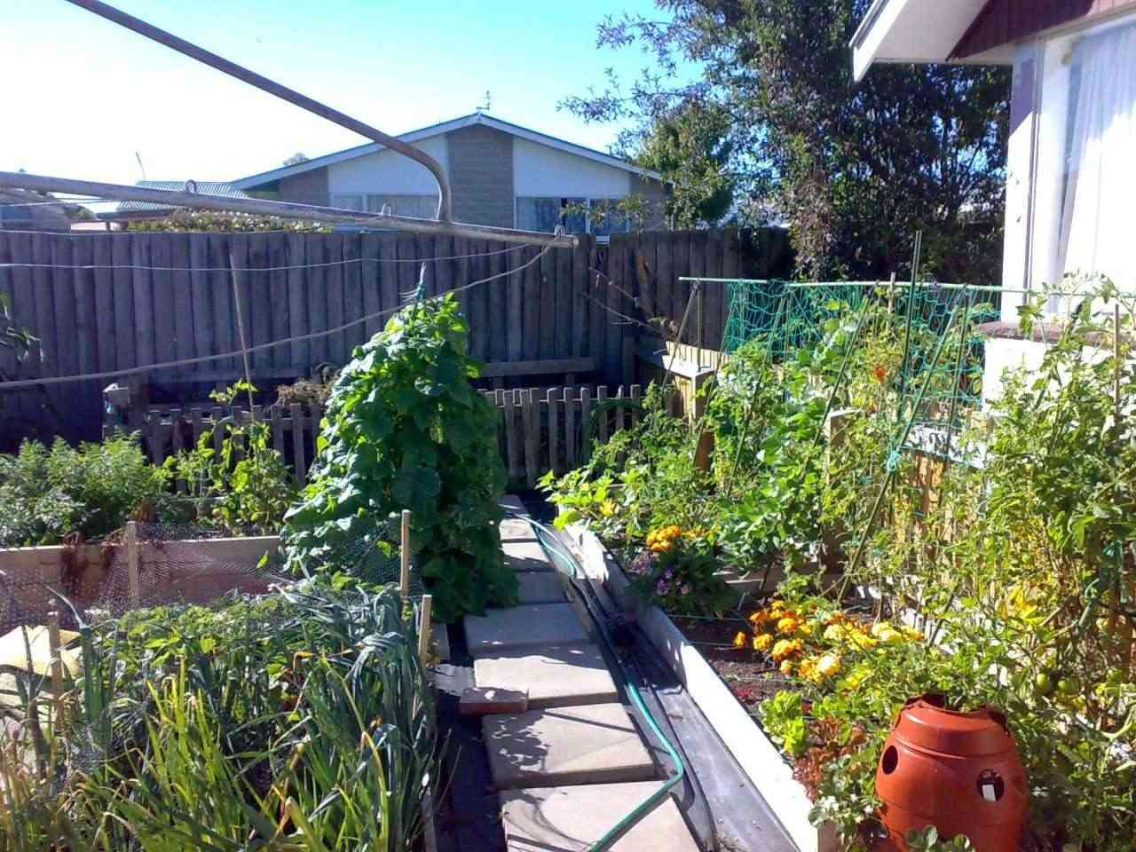 A New Zealand square foot garden 27022010