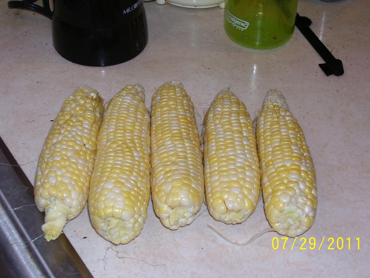 Sweet corn (pic) Corn110