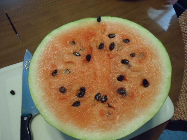 Moon & Stars Watermelon - Page 3 Dsc00211