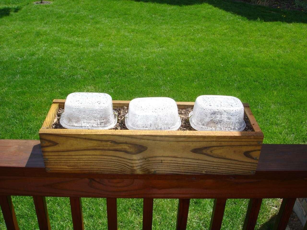 Railing Boxes and Mini-Greenhouses Dsc02510