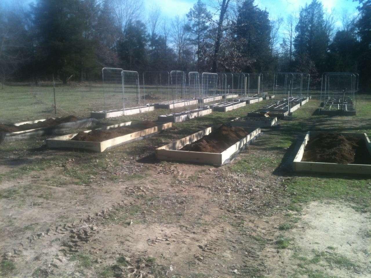 Jaybirds SFG Farm Staatus Update Feb_2811