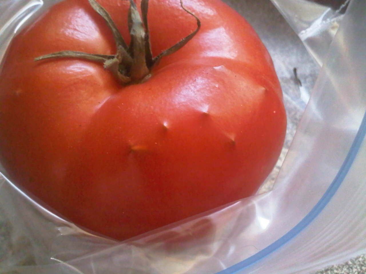What's wrong with this tomato?? Img00322